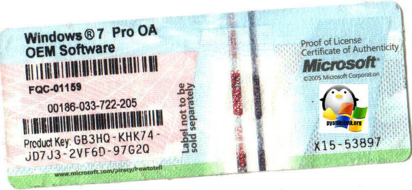 OEM лицензия