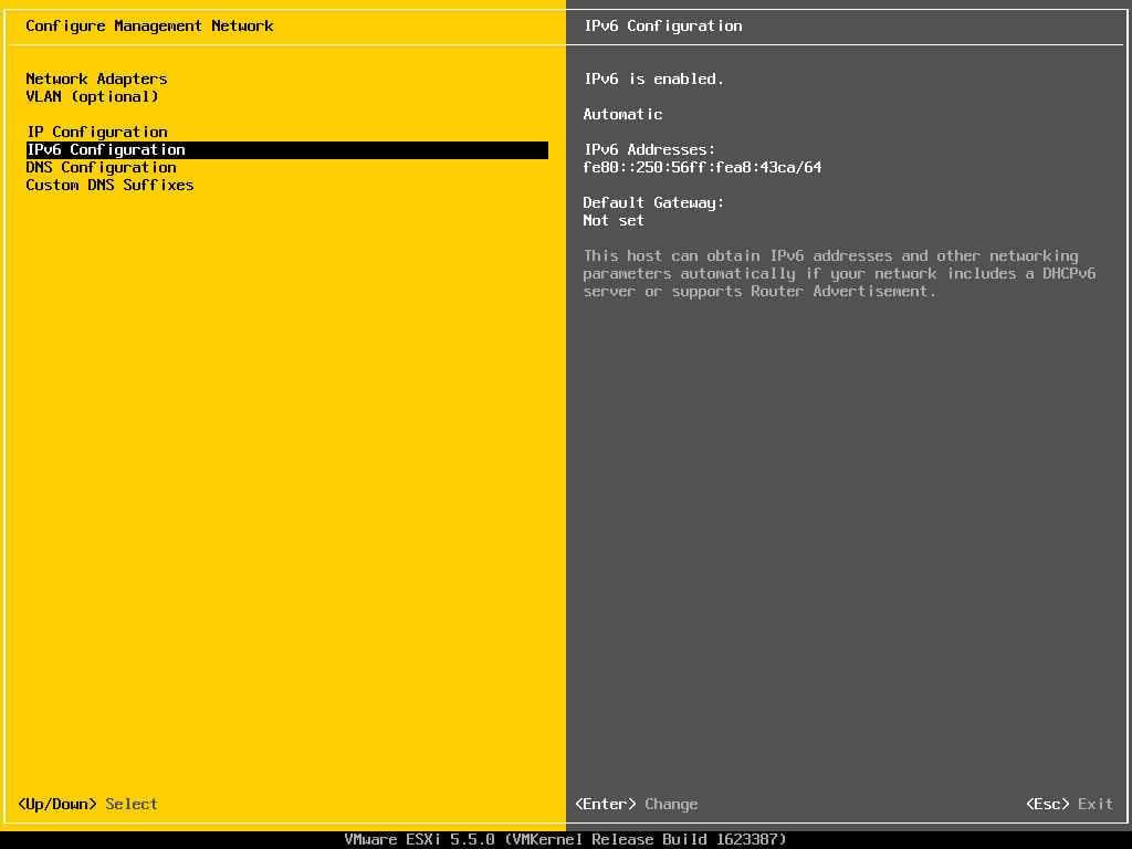 Описание локальных параметров в ESXI 5.x.x-13
