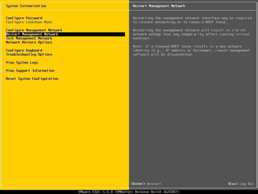 Описание локальных параметров в ESXI 5.x.x-19