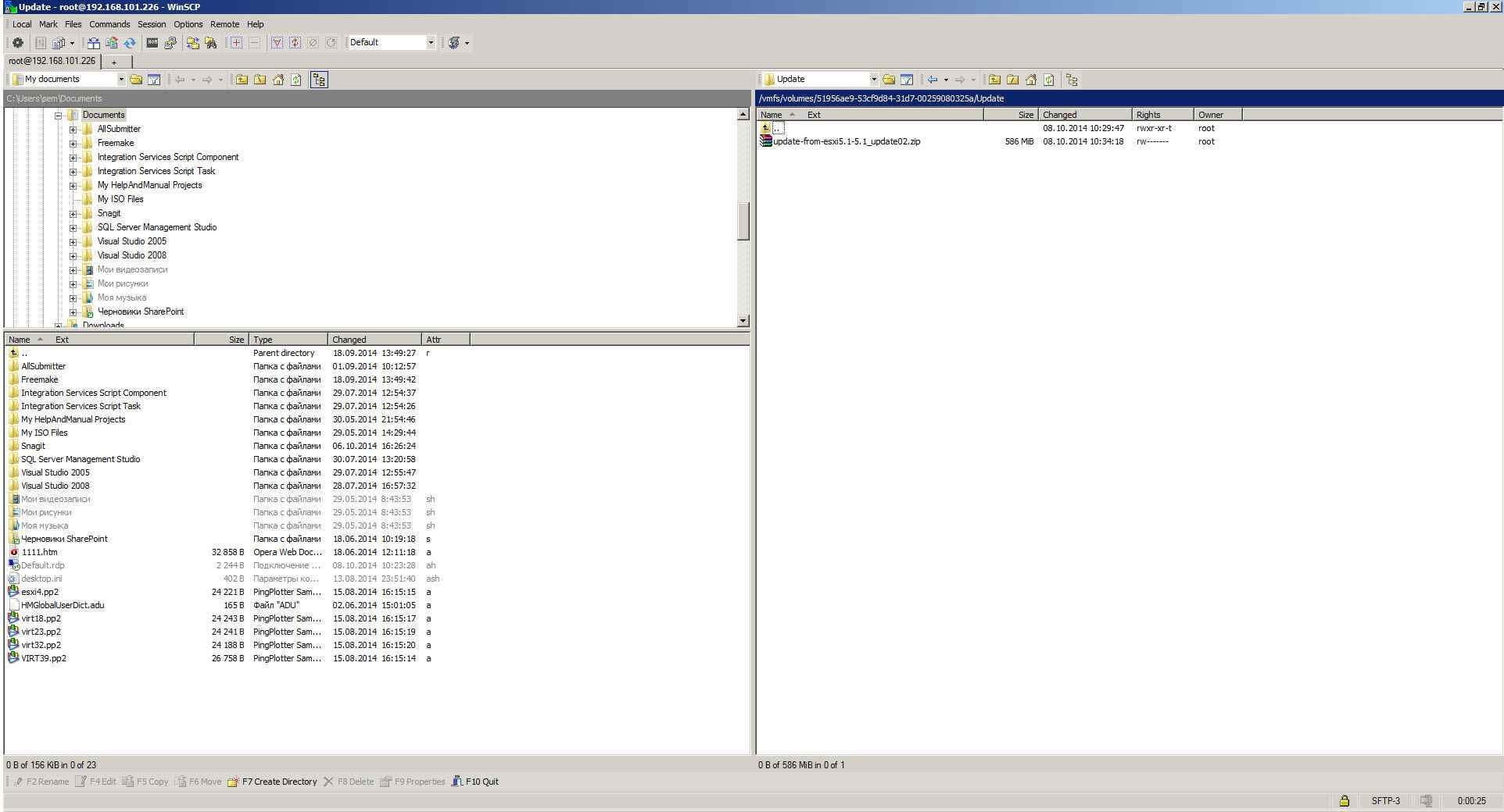 Как скопировать файл в в ESXI 5.x.x-10