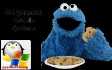 Как удалить cookie файлы