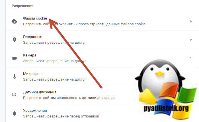 Файлы cookie google chrome