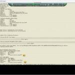 Как обновить вручную биос (firmware) на блейдах (Серверах) HP на примере HS22 7871H2G