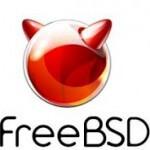 Как расширить диск во FreeBSD в виртуальной машине на vMware ESXI 5.x.x