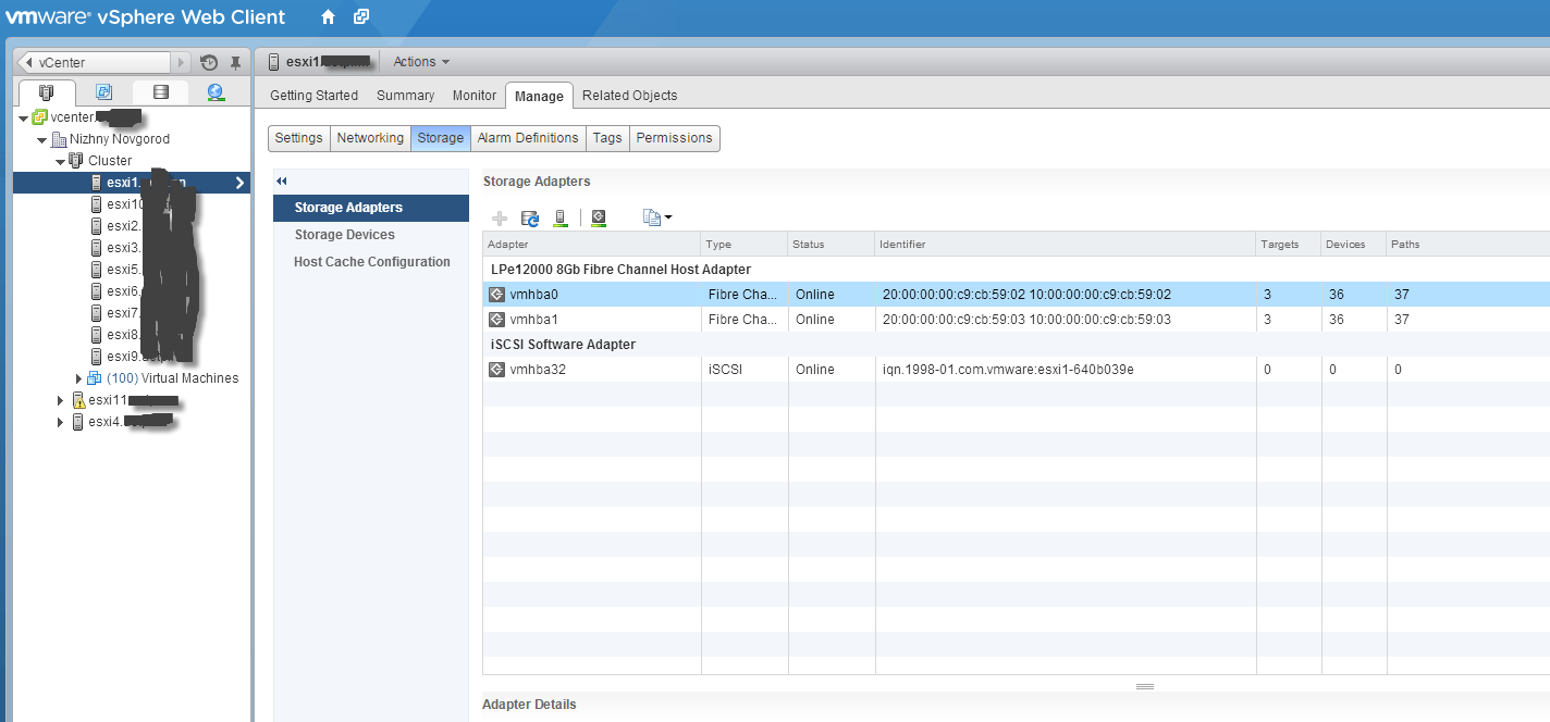 Как узнать WWN (World Wide Name) в Vmware ESXI через VMware Web Client-01