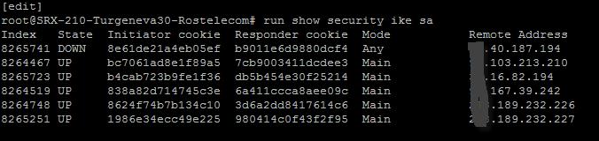 Как в Juniper SRX посмотреть состояние фаз в VPN туннеле по протоколам IKE и IPSEC-01