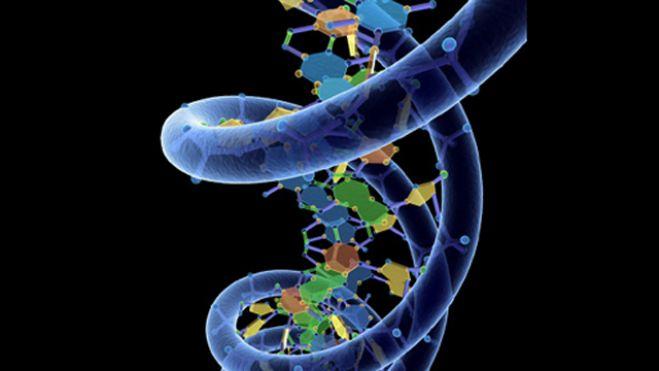 HDD на базе ДНК может хранить информацию в течение 2 млн лет-2
