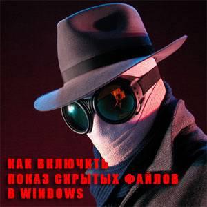 отображение скрытых файлов в Windows 7