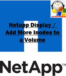 Netapp Display / Add More Inodes to a Volume