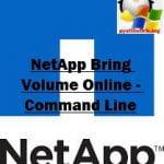 NetApp Bring Volume Online — Command Line