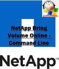NetApp Bring Volume Online - Command Line