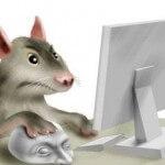 Не работает мышка в MS Office 2007