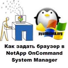 Как задать браузер в NetApp OnCommand System Manager-01