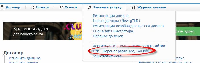 Как настроить перенаправление домена на nic.ru-01