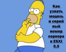 Kak-uznat-model-i-seriynyiy-nomer-servera-v-ESXI-5.5