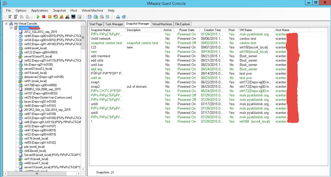 Как массово удалить snapshot виртуальных машин в vCenter 5.5-04