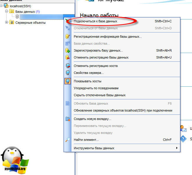 Ошибка db query error please try later на сайте 1С битрикс-5
