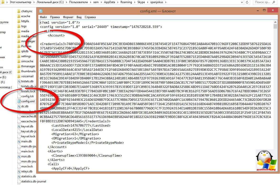 Где хранится пароль skype-1