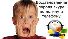 Восстановление пароля skype по логину и телефону