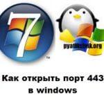 Как открыть порт 443 в windows, за минуту