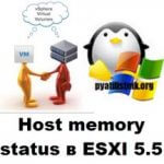 Host memory status в ESXI 5.5
