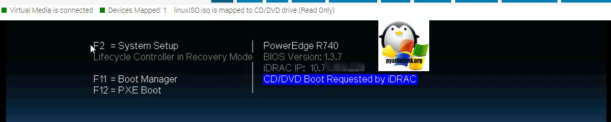 Dell R610 Setup