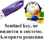 Sentinel key, не видится в системе. Алгоритм решения