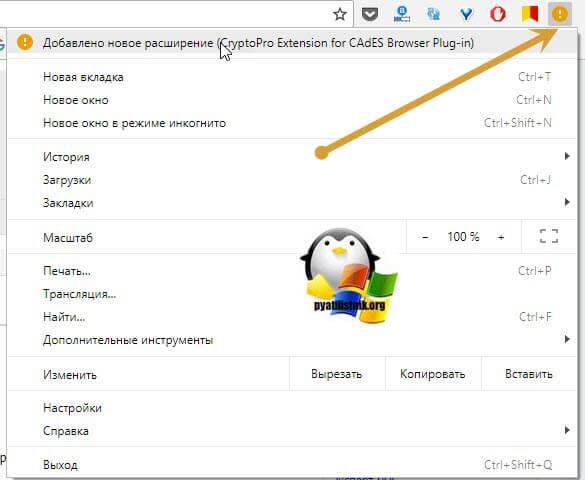 Установка КриптоПро ЭЦП Browser plug-in-06