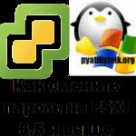Как сменить пароль на ESXI 6.5 и выше