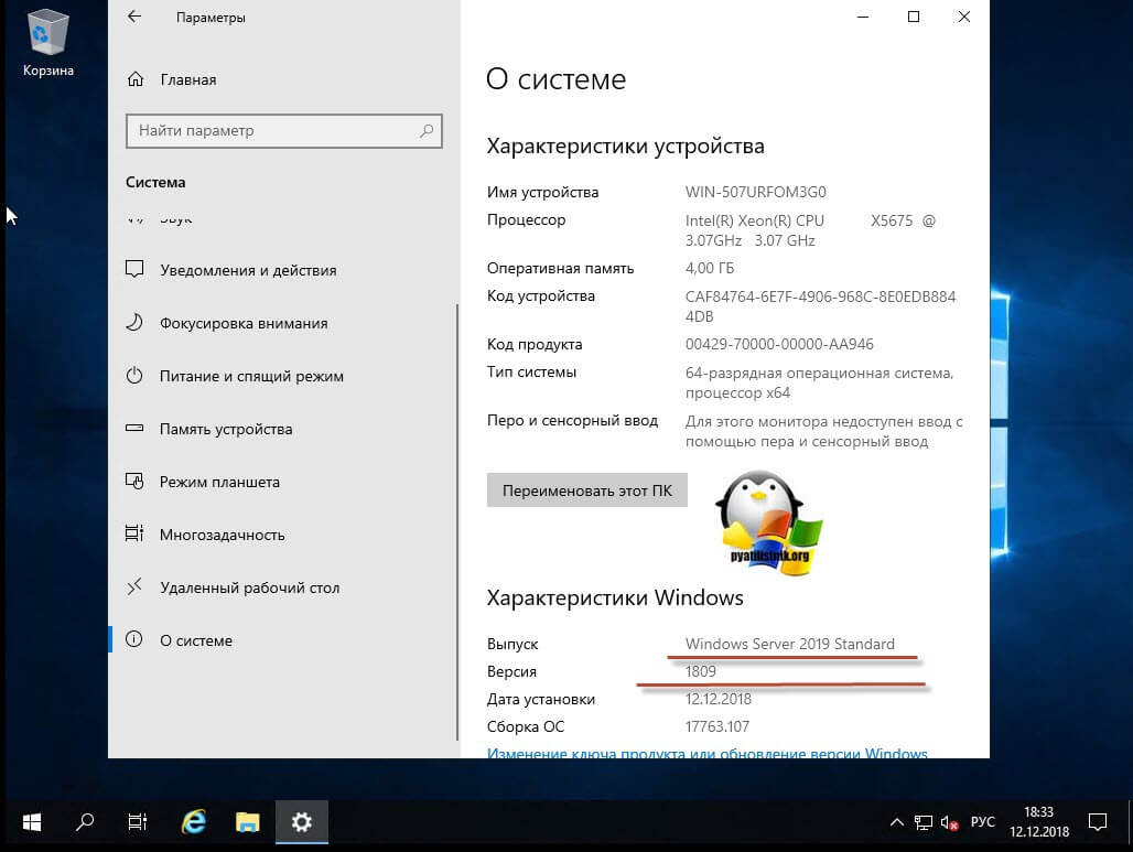 Сведения о системе в Windows Server 2019