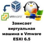 Зависает виртуальная машина в Vmware ESXI 6.5