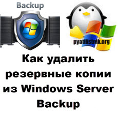 Windows Server Backup logo