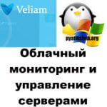 Облачный мониторинг и управление серверами в veliam