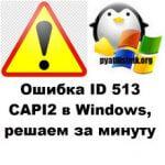 Ошибка ID 513 CAPI2, решаем за минуту