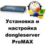 Установка и настройка dongleserver ProMAX