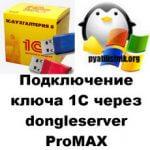 Подключение ключа 1С через dongleserver ProMAX