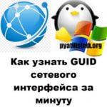 Как узнать GUID сетевого интерфейса за минуту