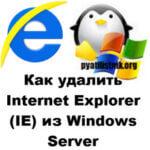 Как удалить Internet Explorer (IE) из Windows Server и Windows 10